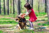 Little girl putting hat on the dog in the wood — Stock Photo