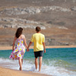 Young couple holding hands and walking carefree on the beach on summer vacation — Stock Photo #38988657