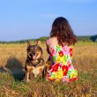 Young woman sitting with her dog on the meadow at sunset — Stock Photo #38988949