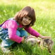 Little girl playing with cat on the grass — Stock Photo