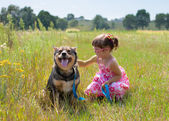Little girl playing with dog at the meadow — Stock Photo