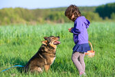 Happy little girl playing with dog — Foto Stock