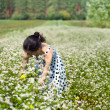 Young woman harvesting buckwheat — Stock Photo #39335419