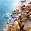 Stone seashore — Stock Photo #39362233