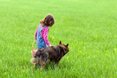 Little girl with dog walking on the field back to camera — Stok fotoğraf