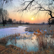 Stock Photo: Sunset over frozen brook