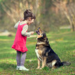Girl talking to dog — Stock Photo #41124125