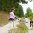 Little girl with dog — Stock Photo #41780877
