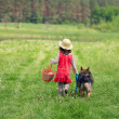 Little girl with dog — Stock Photo #41780889