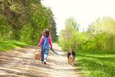 Girl walking with dog — Stock Photo