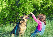 Girl with her dog in the forest — Stock Photo