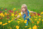 Little girl picking flowers in the meadow — Stock Photo