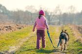 Küçük kız köpek yürüyüş — Stok fotoğraf