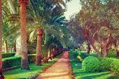Jardins bahai — Foto Stock