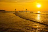 Gold sunset over sea — Stock Photo