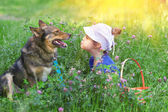 Little girl and dog sitting in the clover lawn — Stok fotoğraf