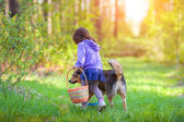 Girl walking  with dog — Stock Photo