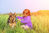 Little girl walking with dog in the meadow — Stock Photo
