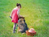 Little girl with dog on picnic — Stock Photo