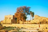 Ancient city Caesarea in Israel — Stock Photo