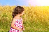 Little girl an oat field — Stock Photo