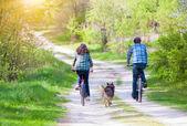 Unga lyckliga par rida cyklar — Stockfoto