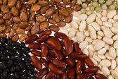 Assorted beans — Stock Photo