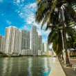 Downtown Miami — Stock Photo #38225291