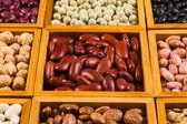 Boxes of beans — Stockfoto