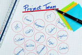 Project Management Team Diagram — Stock Photo