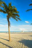 Crandon Park Beach — Stok fotoğraf