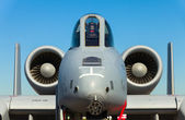 A-10 Thunderbolt jet — Stock Photo