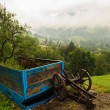 Farm Carriage — Stock Photo
