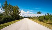 Lonely road — Стоковое фото