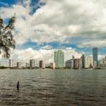 Miami Skyline — Stock Photo #42265941