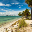 Постер, плакат: Key Biscayne Beach