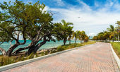 Key Biscayne Beach — Stock Photo