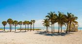 Přestože park beach — Stock fotografie