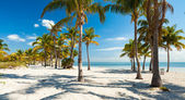 Crandon Park Beach — Stock Photo