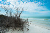 Fort Myers Beach — Stock Photo