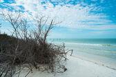 Fort Myers Beach — Stockfoto
