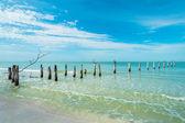 Fort Myers Beach — Zdjęcie stockowe