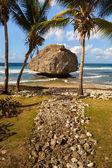 Barbados Beach — Stock Photo