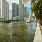 ������, ������: Miami River