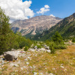 Swiss Mountains — Stock Photo