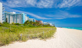 Miami Beach — Photo