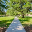 College campus — Stock Photo #46375675