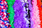 Colorful feather boas — Photo