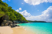 Krásné karibské pláži — Stock fotografie