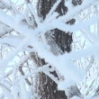 Stock Video: Sagging tree branch inscribed with frost (snow)